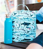 blue-lunchbox-with-shark-design-beside-blue-drink-bottle
