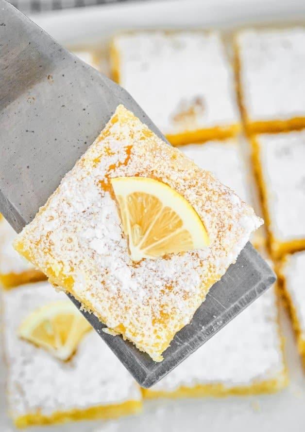 lemon-slice-square-on-metal-server