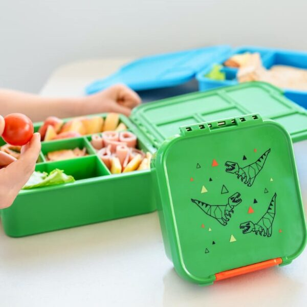 hands holding a green bento lunchbox full of food