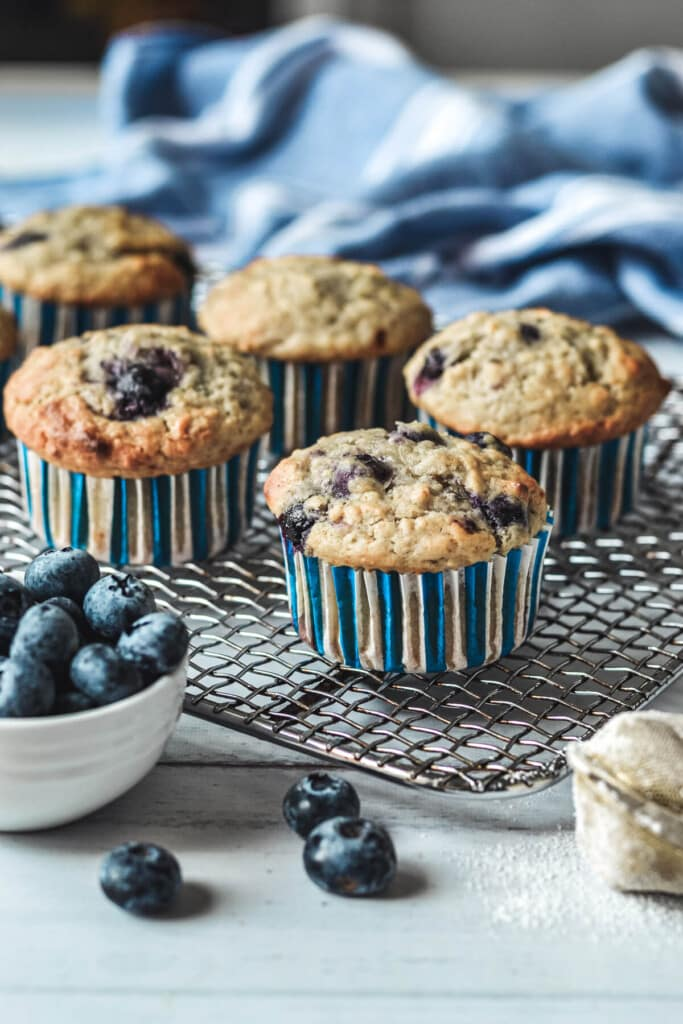 cupcakes arranged on a wire cooling rack with blueberries.